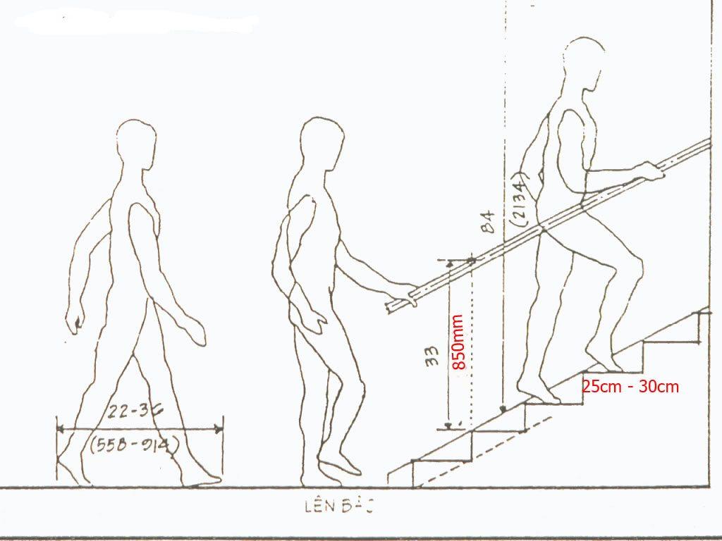 Độ rộng cầu thang đảm bảo tối thiết 2 người có thể đi cùng lúc